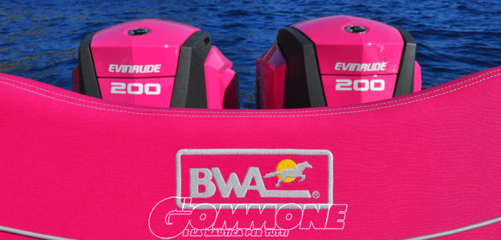 Bwa-Evinrude: nuova strategia comune per l'Europa